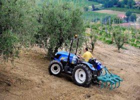 Immagine dell'articolo  New Holland agriculture TD 4000 F