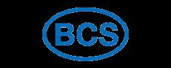 Logo Ricambi BCS