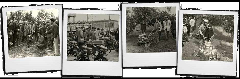 Polaroids empresa Malavolta