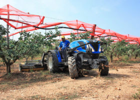 trattore new holland t4 100f bassotto tra colture specializzate