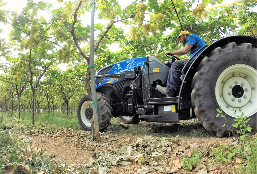 alta manovrabilità del trattore new holland T4 100 F bassotto