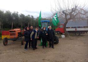 Immagine dell'articolo Consegna trattore New Holland azienda agricola Grillo Luigi